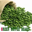 Benefits of Green Coffee Bean Pure for Weight Loss 1