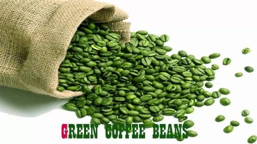 Benefits of Green Coffee Bean Pure for Weight Loss 4