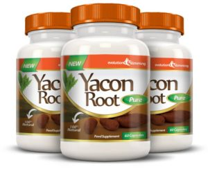 yacon root pure review