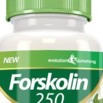 forskolin fat burner