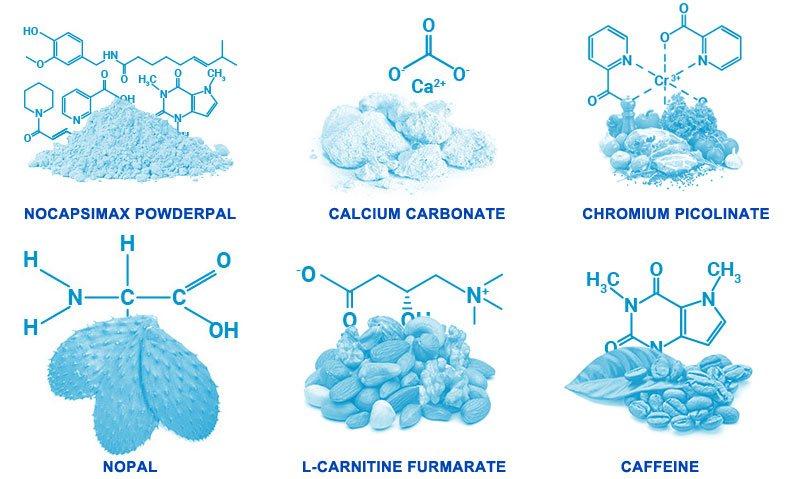 ingredients in phenq