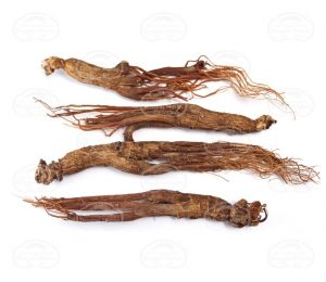 Red Ginseng Extract ingredient