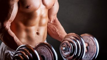testofuel bodybuilding